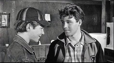 the last picture show book summary the last picture show 1971 timothy bottoms jeff