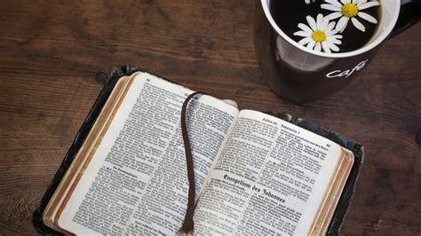 Der Garten Bibel by 6 Alte Sprichw 246 Rter Und Redewendungen Aus Der Bibel