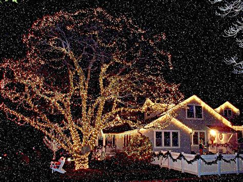 lights and snow lights in snow photograph by rick todaro