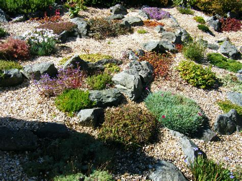 what is rock garden transforming a bluebell zone into a rock garden the
