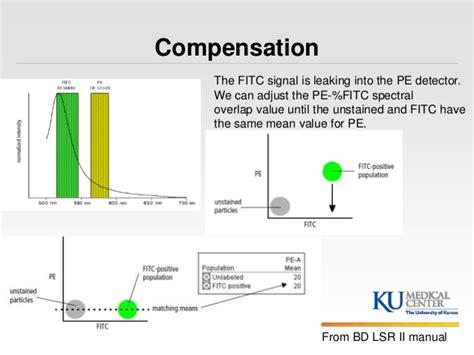 flow cytometry compensation kumc introduction to flow cytometry