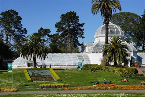 botanical garden golden gate park panoramio photo of san francisco botanical garden