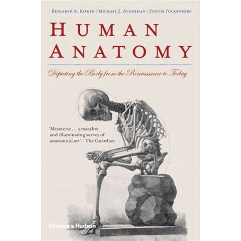 anatomy book with cadaver pictures netter anatomy book covers
