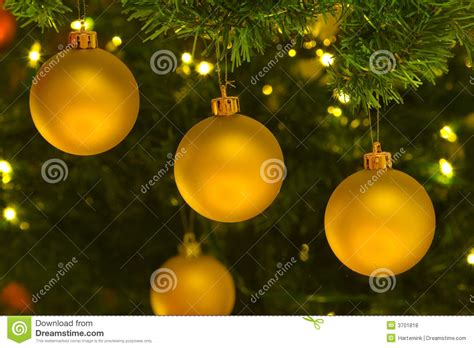 yellow tree decorations yellow ornaments in tree royalty free