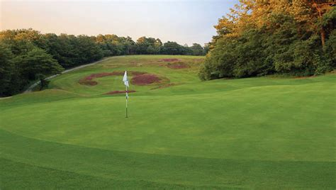 woodwork courses surrey falconwood golf club surrey golf courses