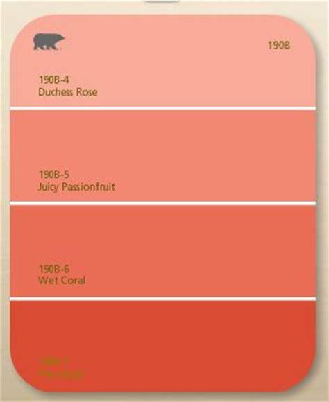 behr paint colors coral behr coral colors color combos