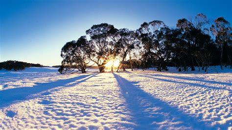 in australia best places to see snow in australia tourism australia