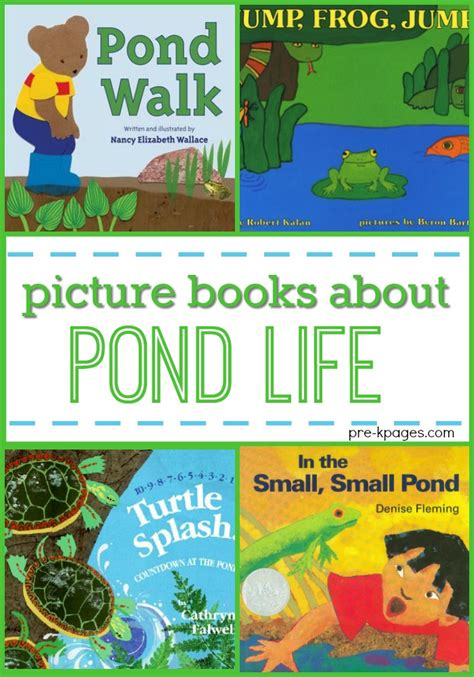 preschool picture books books for preschool about pond pre k pages