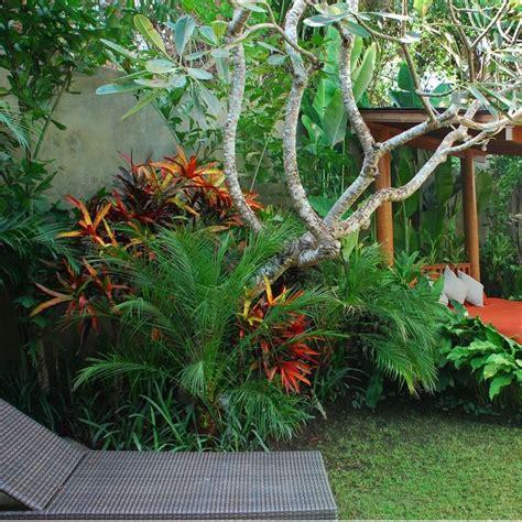 tropical front garden ideas 25 unique tropical garden design ideas on