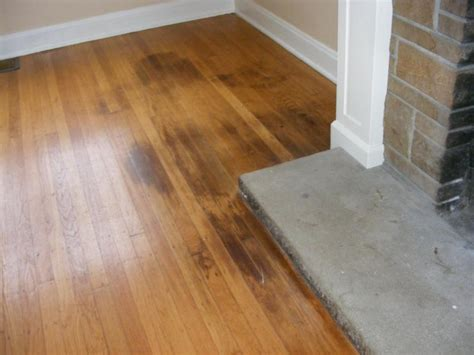 Bleach On Hardwood Floors by How To Clean Pet Urine From Wood Floors