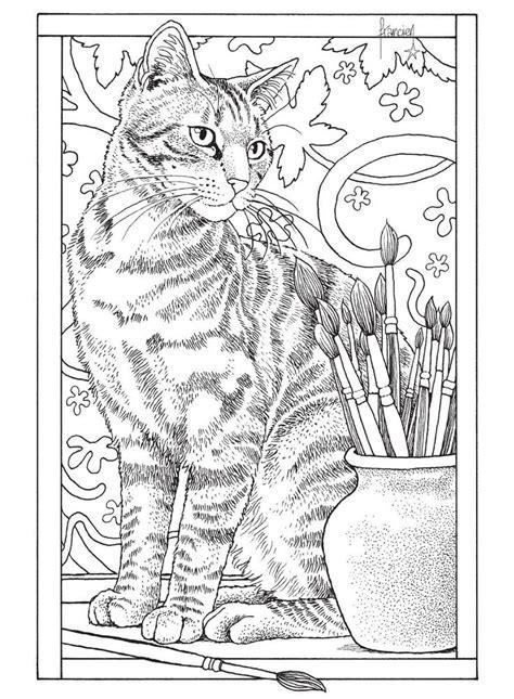cat for adults m 225 s de 1000 im 225 genes sobre dibujos y pinturas en