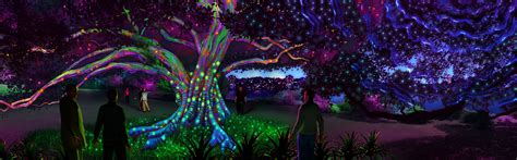 botanical garden of lights sydney at the royal botanic garden 2016 sydney