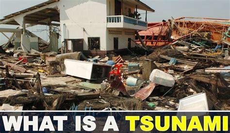 could canaries volcano really cause a mega tsunami that