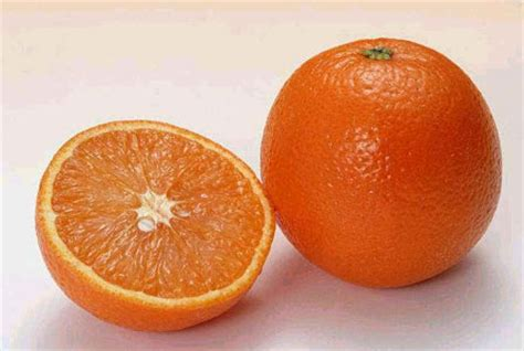 orange seed orange valencia seeds fruit tree zhong wei horticultural