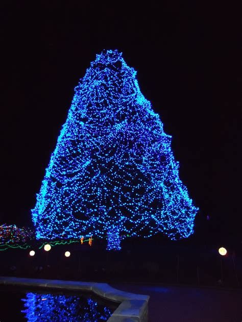 toledo zoo lights hours best 28 toledo zoo hours lights before