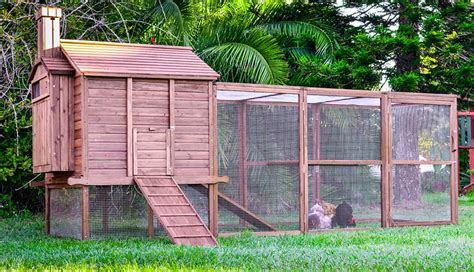 backyard chicken houses backyard chicken coops pty ltd outdoor furniture design