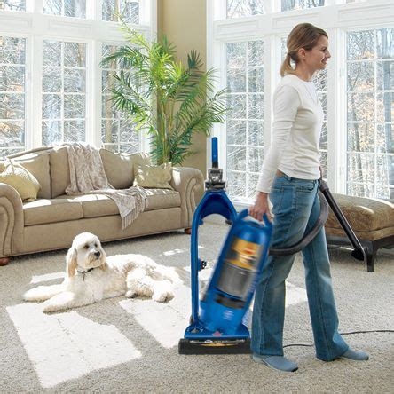 Best Way To Clean Carpeted Stairs by 17 Best Ideas About Pet Vacuum On Pinterest Lift Off