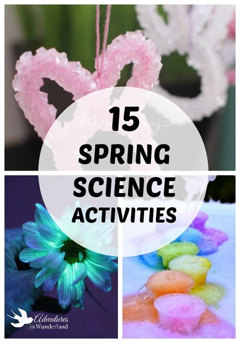 science crafts for science activities for