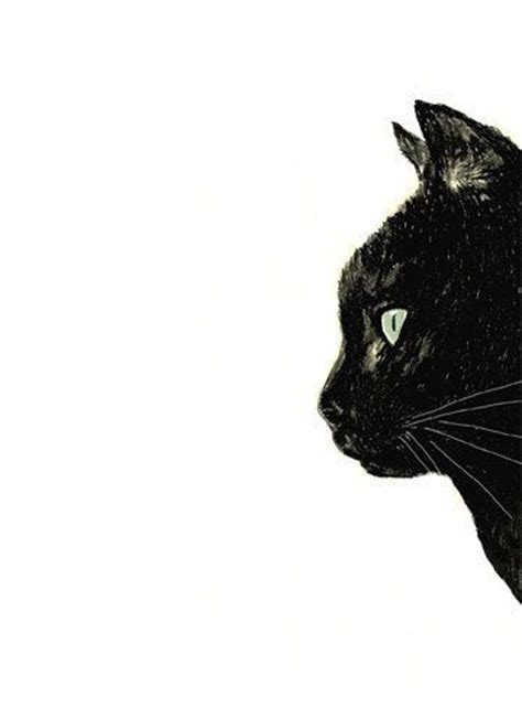 black cat painting step by step 25 best ideas about cat drawing on cat