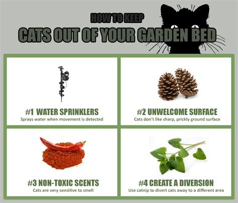 how to keep cats out of vegetable garden how to keep cats out of my raised garden beds best cat