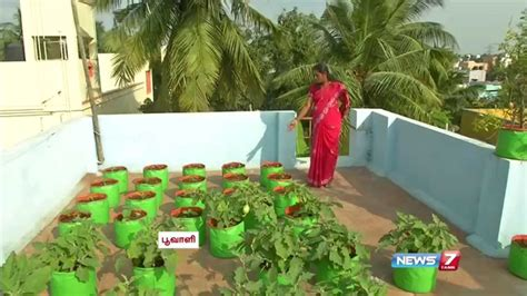 vegetable gardening in pots how to grow vegetables in a container or pots on the