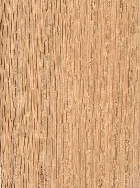 oak tree woodworking image gallery oak tree wood