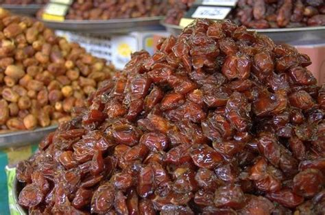 national tree dates interesting facts about date fruits and date trees