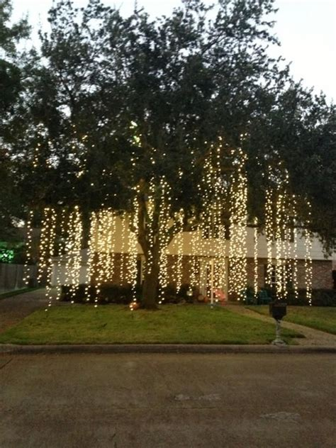how to put lights on a tree outside raining lights how amazing would this look hanging from