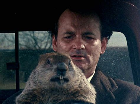 This Amazing Supercut Shows Every Day In Groundhog Day