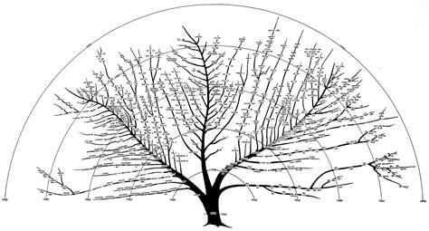 computer tree digibarn re visiting and revising the bushy tree