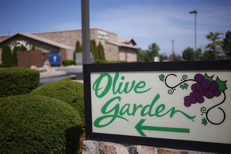 olive garden y olive garden cooks up large portion of darden restaurants q2 earnings fortune