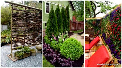 ideas for your backyard 22 simply beautiful low budget privacy screens for your