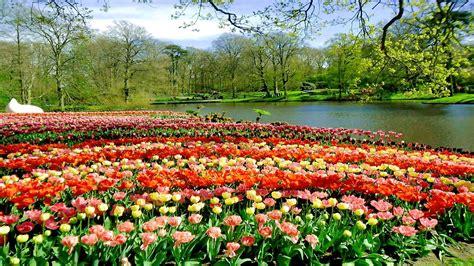 most beautiful flower garden the most beautiful flower garden in the world www