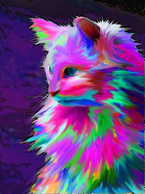 rainbow cat painting neon colorful cat graphic design all the colors of