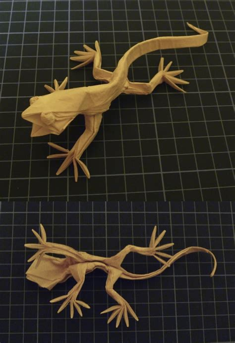 origami lizard diagram the origami forum view topic detailed lizard