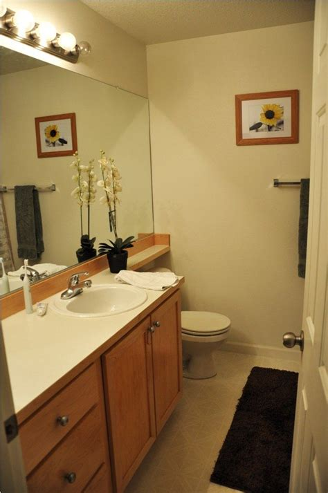 Bathroom Ideas Cheap Makeovers by 25 Best Ideas About Small Bathroom Makeovers On