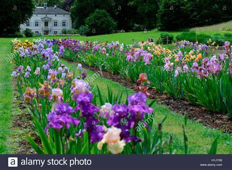Garten In Der Schweiz by Deutsche Iris Garten Der Villa Merian Basel Gruen 80