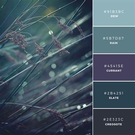 color palette ideas for websites best 25 color swatches ideas on colour