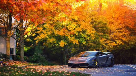Car Wallpapers Hd Lamborghini Wallpaper For Mac by Lamborghini Autumn Gallardo Hd Cars 4k Wallpapers