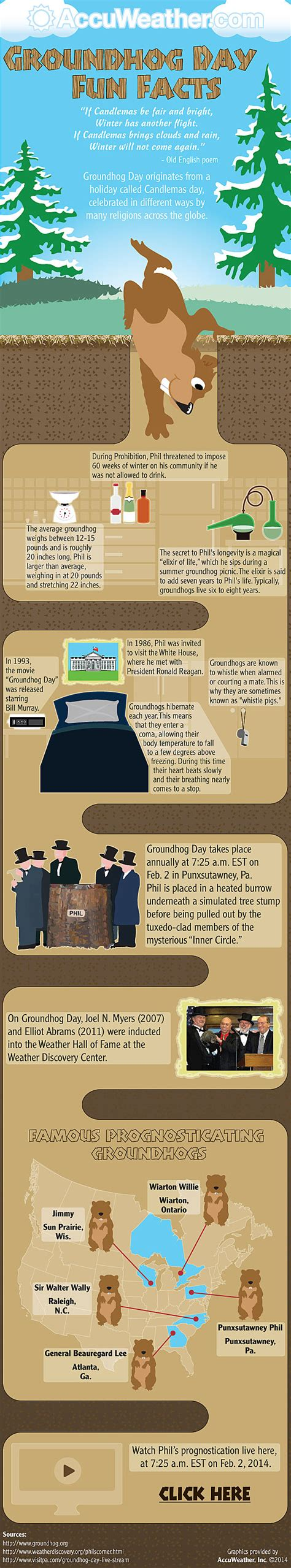 groundhog day information infographic all there is to about phil