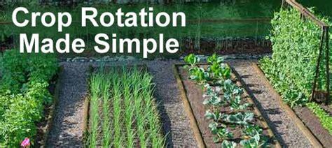 crop rotation home vegetable garden wilson bros gardens