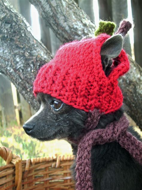 knitted hats for dogs it anywear knits for dogs
