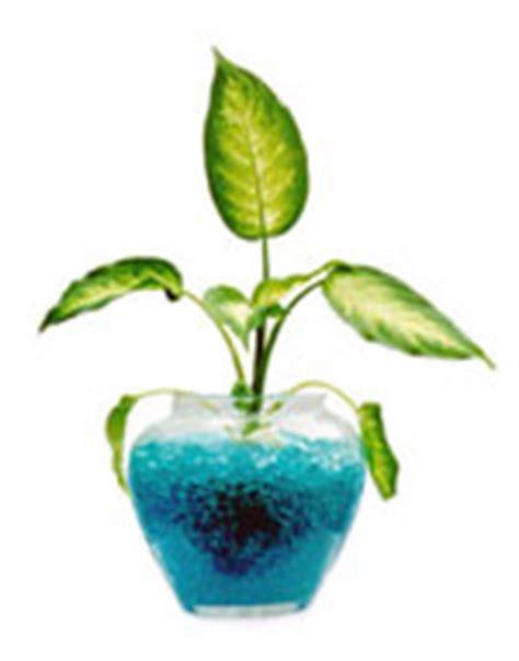 Plant Gel Soil Alternative