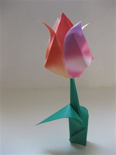 tulip origami for tulip with leaf origami pleasant projects