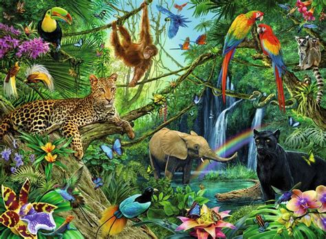animal jungle best 25 jungle ideas only on ink