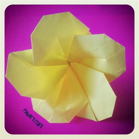 plumeria dollar origami 1000 images about origami on