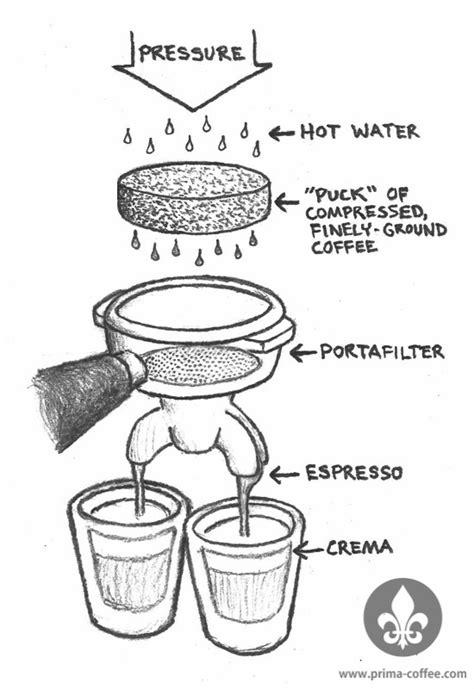 Espresso 101: What is it?   Prima Coffee