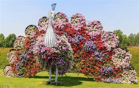 beautiful images of flower gardens rainbow coloured oasis with 45m flowers is in the middle