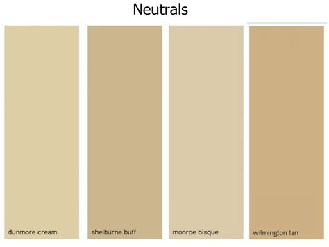 neutral wall colors neutral paint colors on living room living room glubdubs