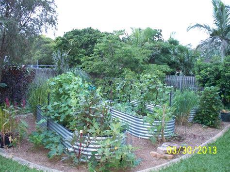vegetable garden brisbane luxurious sub tropical melbourne gardenthe entry garden